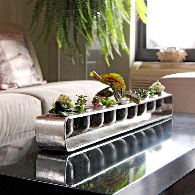 Succulent Silver Terrarium