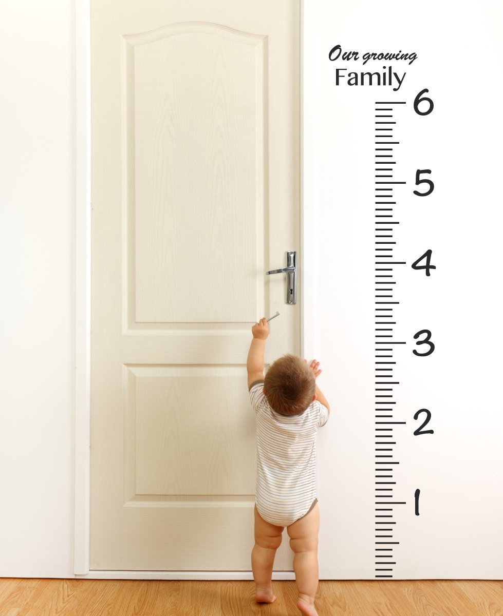 Ruler Growth Chart Decal