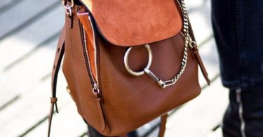 Chloé Tan Medium Faye Backpack