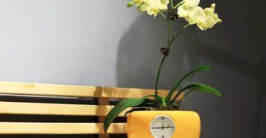 Clock Flowerpot