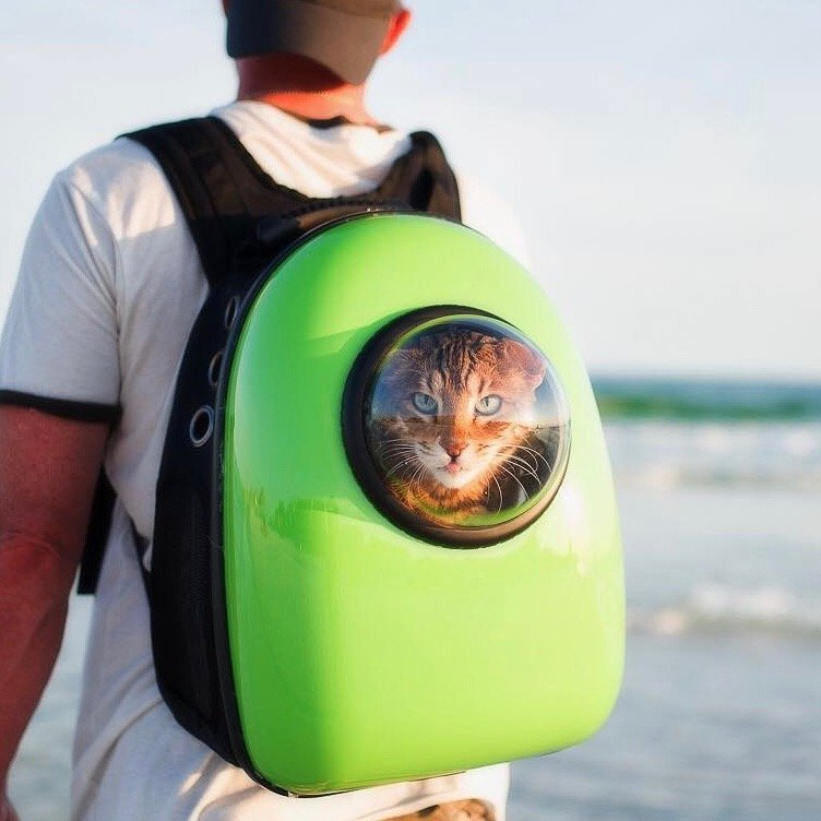 Bubble Pet Carrier Backpack