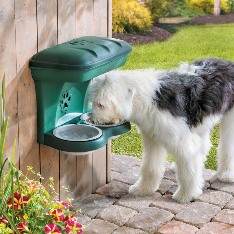 Wall-Mounted Elevated Dog Feeder