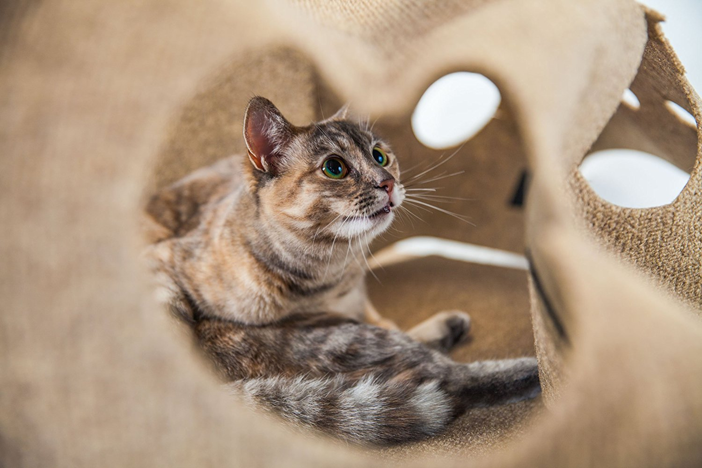 Ripple Rug Cat Play Mat