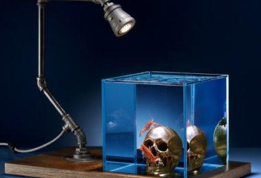 Gold Skull Aquarium