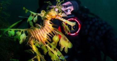 SeaLife Micro 2.0 Underwater Digital Camera
