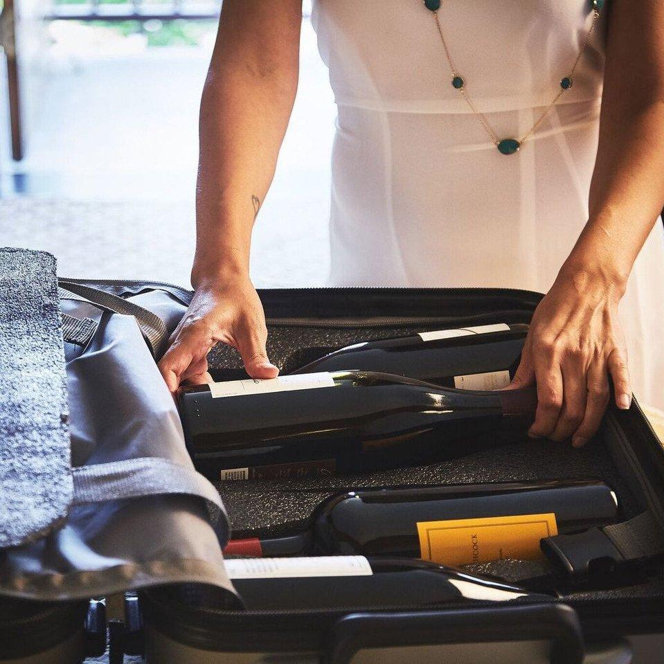 VinGardeValise Wine Luggage