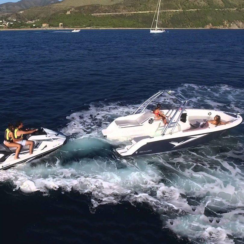 Jet Ski Powered Sealer Wave Boat 656