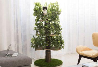 Luxury Cat Tree House