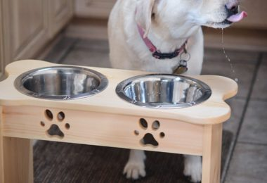 Wooden Pet Feeder