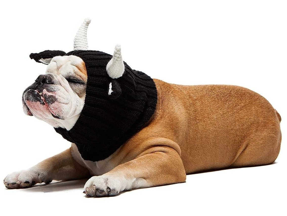 Bull Zoo Snood
