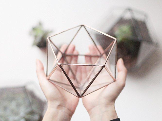 Geometric Terrarium Container