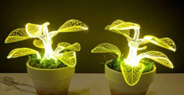 Neon Angel Plant Lamp Set