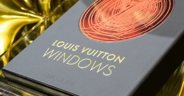 Louis Vuitton Windows Book