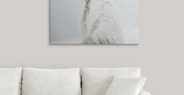 Winter Dreaming Giant Canvas Print