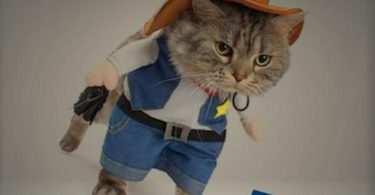 Mikayoo Pet Dog Cat Cowboy Costumes