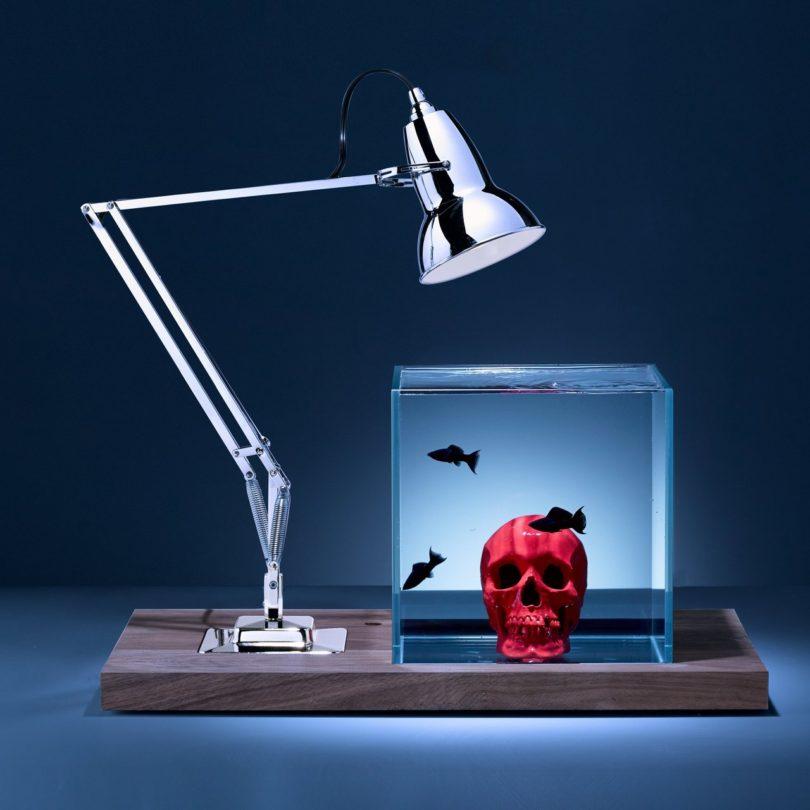 Isolate Aquarium Mid-Century Skull Edition-Red