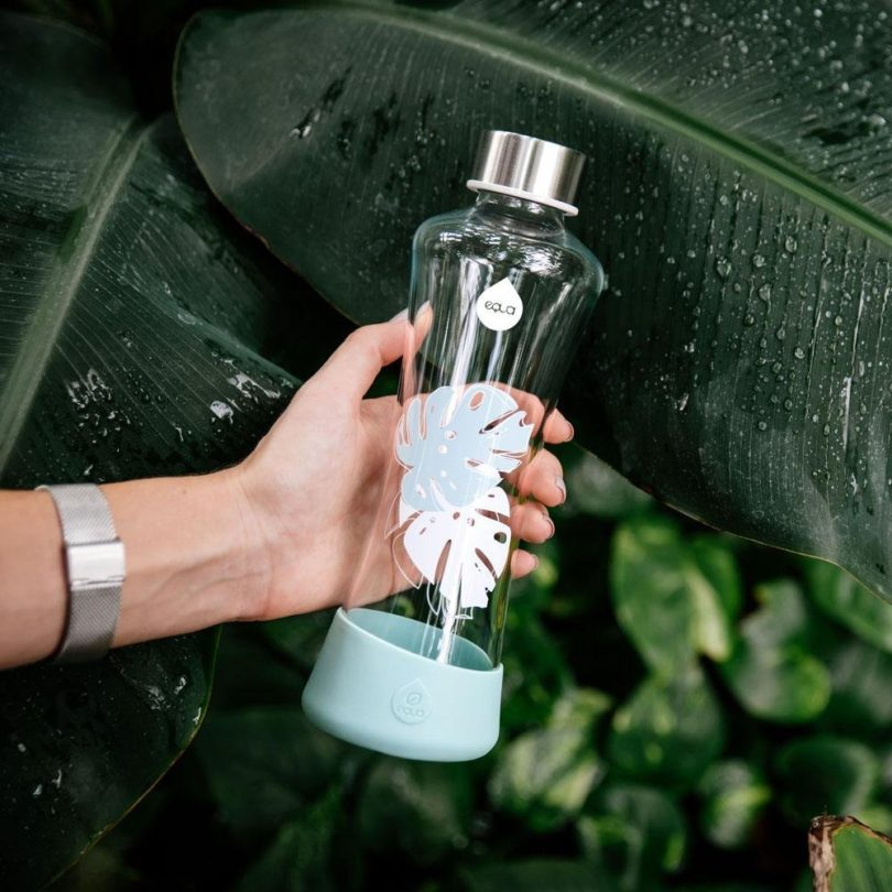 EQUA Glass Water Bottle Monstera