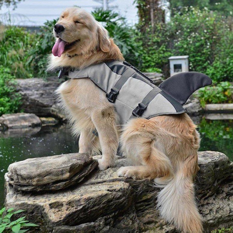 Shark Dog Life Jacket 187 Petagadget
