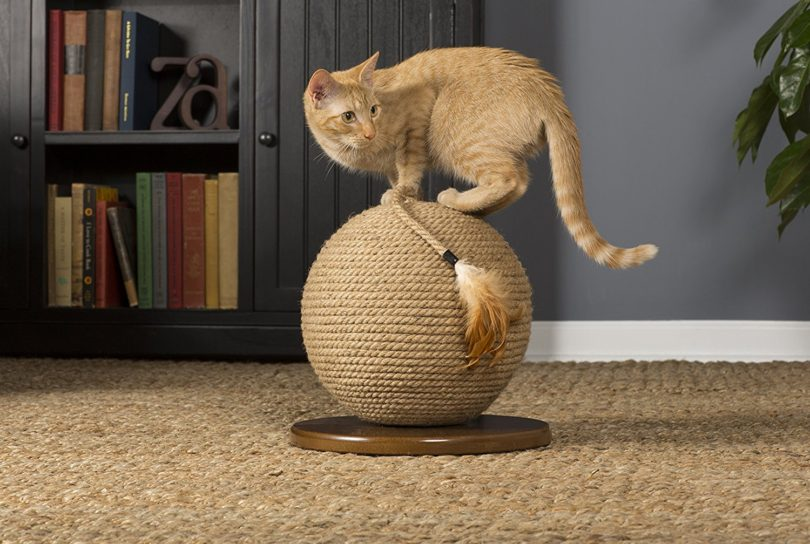 Kitty Power Paws Sphere with Tassel Toy