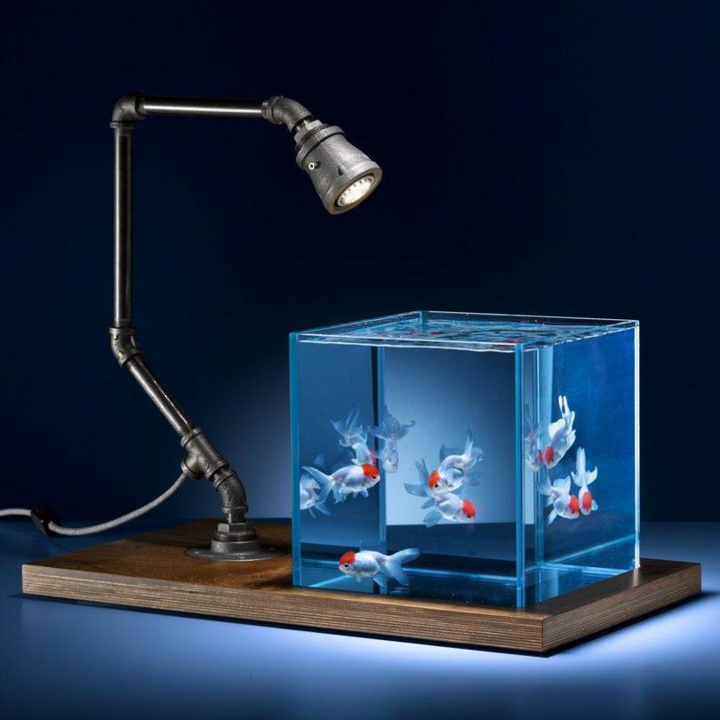 Isolate Aquarium Brooklyn Edition