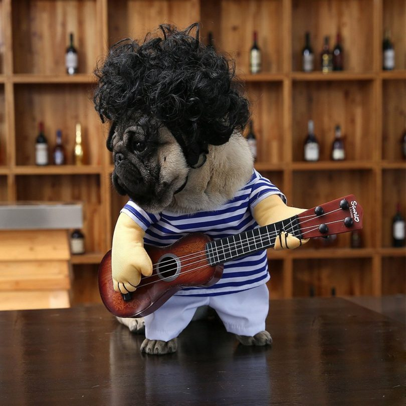 Pet Guitar Costume