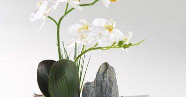 Artificial Phaleanopsis Arrangement with Vase Decorative Orchid
