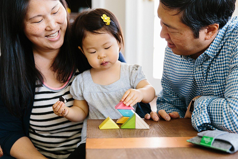 6 Piece Tegu Pocket Pouch Prism Magnetic Wooden Block Set ...