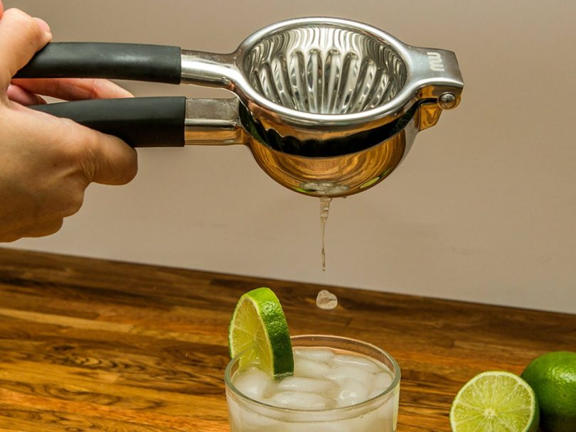Stainless Steel Citrus Squeezer