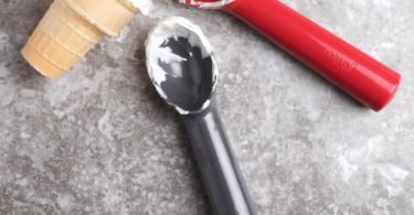 Molded Bamboo Ice Cream Scoop