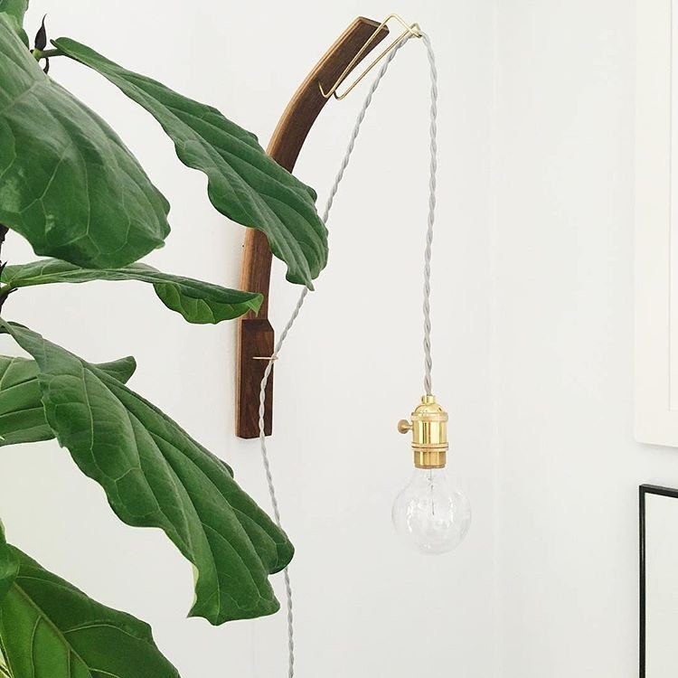 Bent Walnut Pendant Edison Lamp