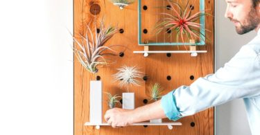 AirplantPegboard