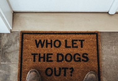 Who Let The Dogs Out? Doormat