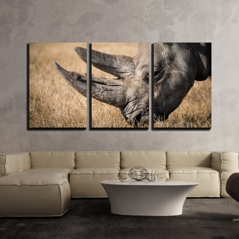 Rhino with Giant Horn on the Grassland – Modern Home Decor