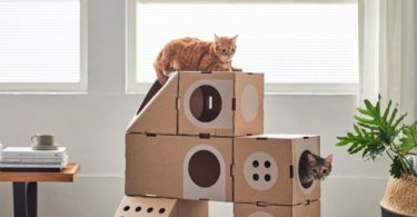A Cat Thing Modular Cat House