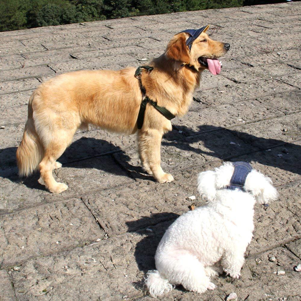 Doggie Baseball Cap