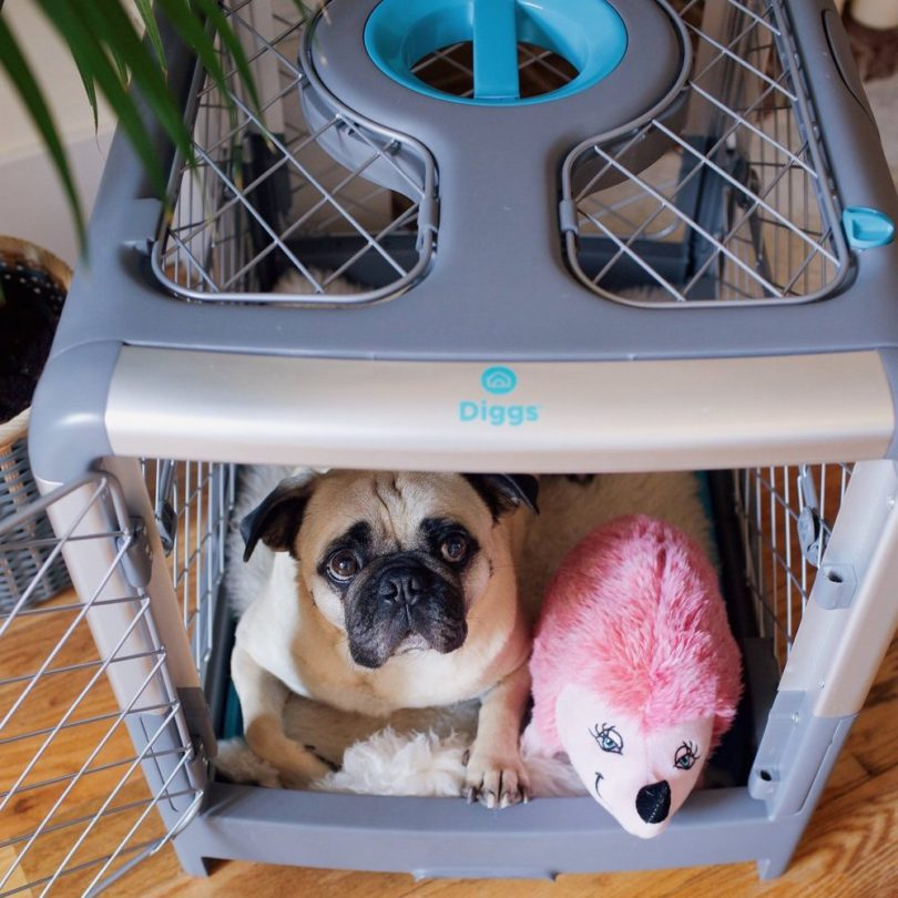 Revol Collapsible Pet Crate
