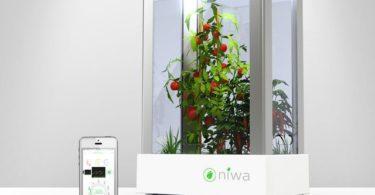 Niwa One Smart Indoor Garden