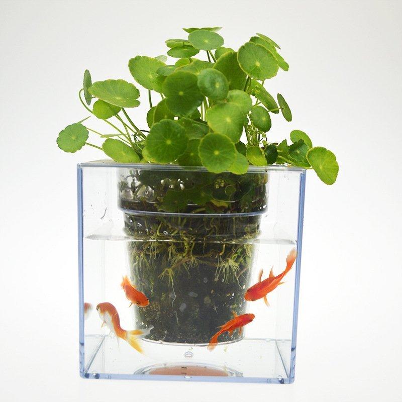 Fish Tank Flowerpot