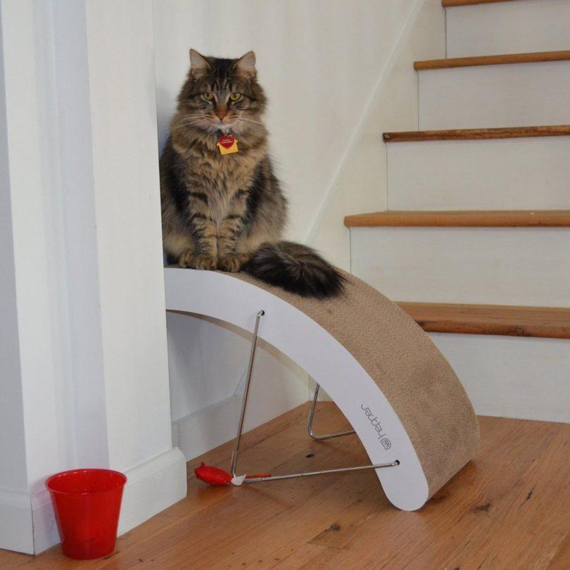 Hi-Lo Cat Scratching Post