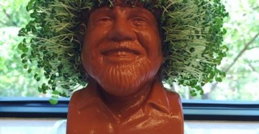 Bob Ross Chia Head – Hair Growing Planter