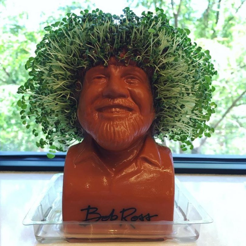 Bob Ross Chia Head – Hair Growing Planter