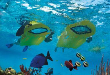 Zayak Underwater Sea Sled