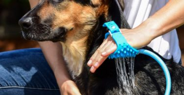 Aquapaw Pet Bathing Glove