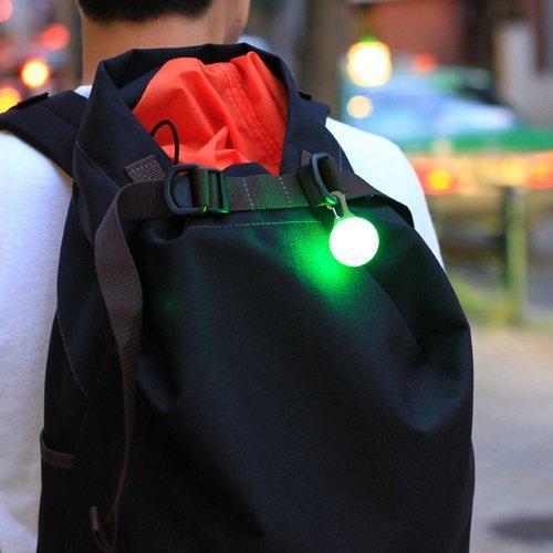 SpotLit LED Light
