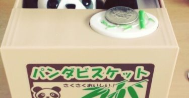 Panda Thief Coin Bank