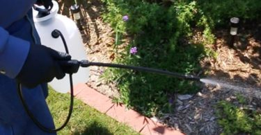 Chapin International 20000 Garden Sprayer