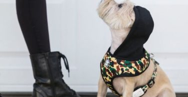 The Hype Camo Hoodie Harness