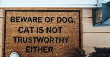 Beware of Dog. Cat is Not Trustworthy Either Doormat