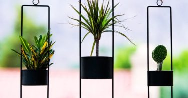 Matte Black Small Upright Hanging Planter