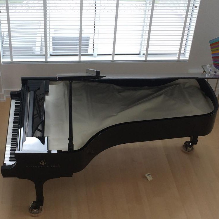 Steinway Model D Concert Grand Piano Sterling Silver Edition
